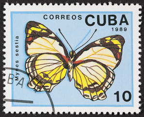 CUBA - CIRCA 1989: A Stamp printed in CUBA shows image of a mynes sestia butterfly, circa 1989