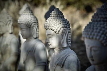Meditating Buddha Statues