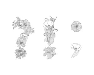 Linear punctuation marks. Alphabet of flowers
