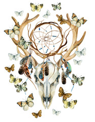 Deer skull. Animal skull with dreamcather and butterfly.