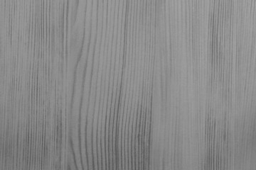 wood texture of gray color with streaks Wall mural