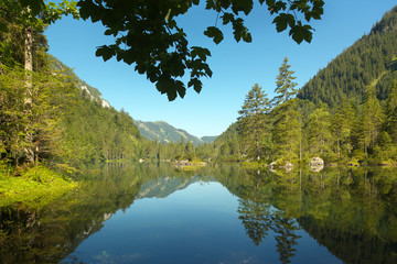 Forest Lake in Gosau Valley, Austria