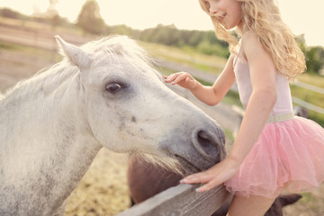 Therapy with horses - hippotherapy