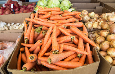 Fresh ripe carrot and over vegetables of new harvest ready to sa