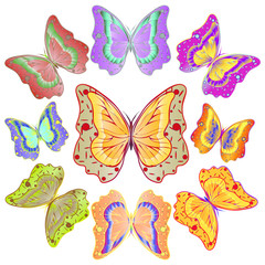 Nine colorful bright butterflies. Vector illustration.