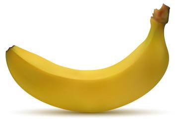 Frutta banana vettoriale realistica in primo piano con sfondo bianco