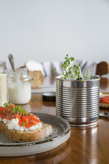 Garden cress grown in recycled tin at home and used to prepare the salmon sandwich