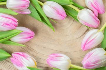 Tulip flower spring frame on wood background.
