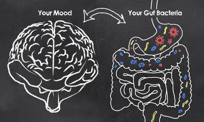 Mood and Gut Bacteria