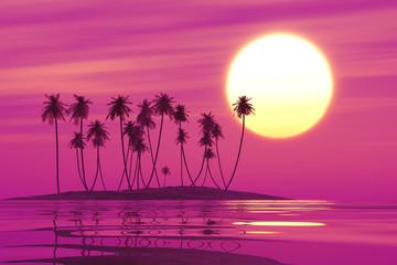 Papiers peints Rose tropical coconut island