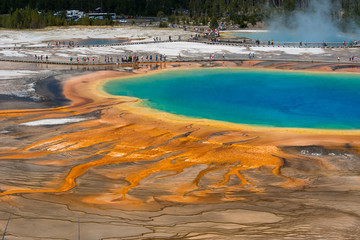 Grand Prismatic Spring detail, Yellowstone National Park, Wyoming