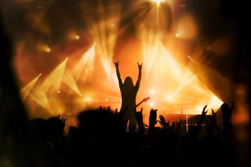concert rock artiste musique musicien guitariste public ambiance