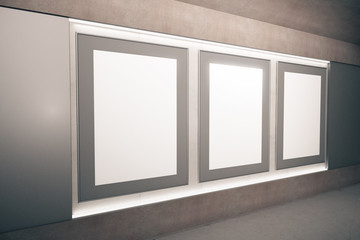 Blank brown picture frames on the wall in empty hall, mock up, 3