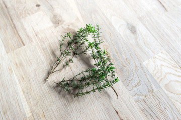 fresh branch of thyme on an oak tree cutting board