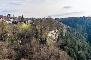 Forest on in Sudetenland, growing on sandstone mountains with vew houses in view