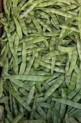 Green beans or string beans