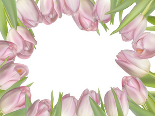 Flowers background with tulips. EPS 10
