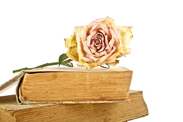 Old books and faded rose on a white background