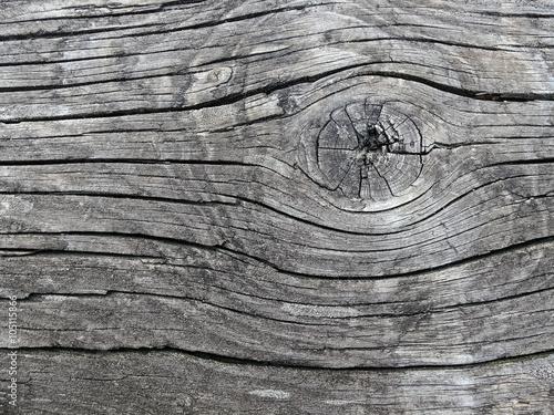 Legno Bianco E Nero : Casetta di legno malconcia su prato in centro equestre bianco e