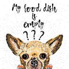 My food dish is empty. Vector illustration with hand drawn lettering and dog on texture background. Inscriptions for dog lovers. Brush lettering. Custom typographic. calligraphy. Demanding phrase.