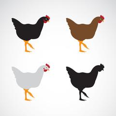 Vector image of an chicken design on white background. Hen