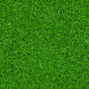 Green grass seamless pattern. Background lawn nature. Abstract field texture. Symbol of summer, plant, eco and natural, growth. Meadow design for card, wallpaper, wrapping, textile Vector Illustration