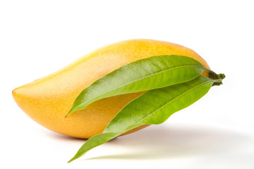 Delicious ripe Mango fruit with green leaf isolated on white background