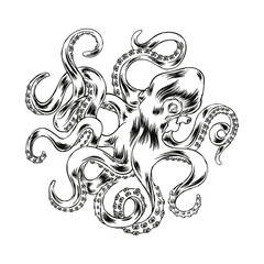 Octopus hand drawn vector illustration. Engraved vector octopus