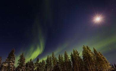 Nordlichter mit Vollmond