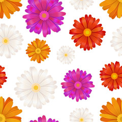 Colourful gerbera flowers isolated on white, seamless pattern