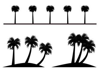 イラスト素材「ヤシの木」