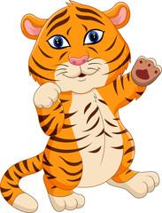 illustration of cute baby tiger cartoon