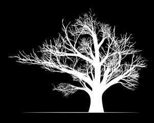 Big white tree on black background vector illustration