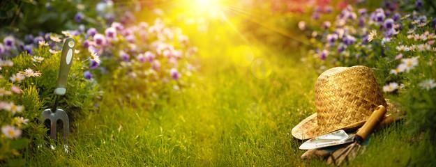 Photo sur Plexiglas Jardin Gardening