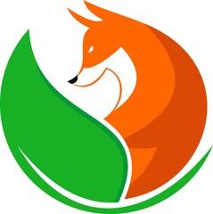 eco fox logo illustration