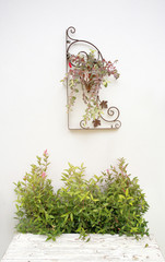 White concrete wall and wood floor,vintage garden background.Sof