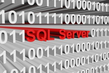 SQL Server is presented in the form of binary code