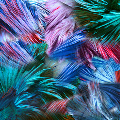 abstract background colorful fighting fish for background
