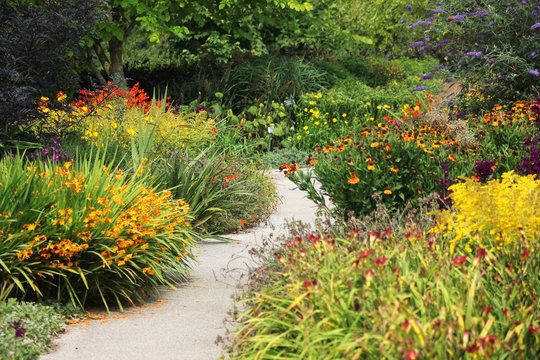Flower Garden With Winding Path