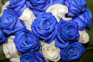 Rose del bouquet