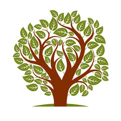 Vector illustration of spring tree with branches in the shape of heart
