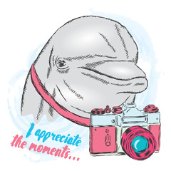 Dolphin with a camera. Cute dolphin. Vector illustration.