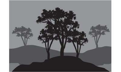 Silhouettes of three trees