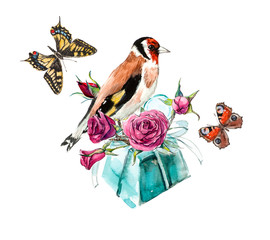 Gift with flowers and birdies and butterflies. Watercolor hand drawing illustration.
