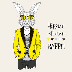 Illustration of rabbit hipster dressed up in jacket, pants and sweater. Vector illustration