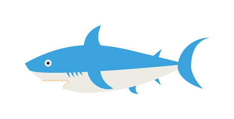 Ocean animal design of cartoon shark vector illustration.