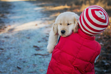 Sleepy golden retriever puppy dog being carried by boy