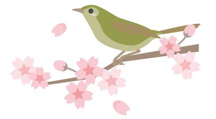 桜とウグイス