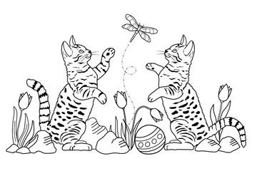 Katzen (Malvorlage)