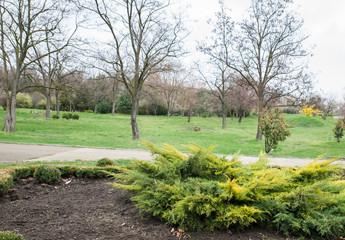 Photo of autumn park